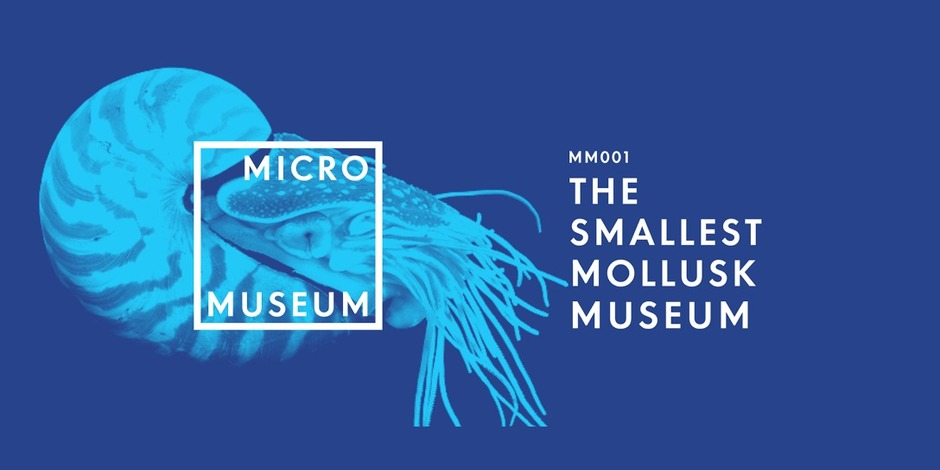 The Awesome Foundation Micromuseums